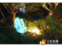 夜景园林实景图