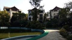 (东坡区)万景东坡院子3室2厅2卫78.5m²毛坯房