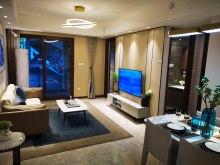 万科眉州文化村3室2厅2卫62.8万85m²精装修